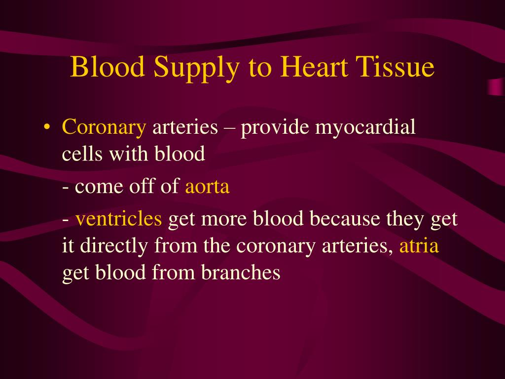 Blood Supply to Heart Tissue