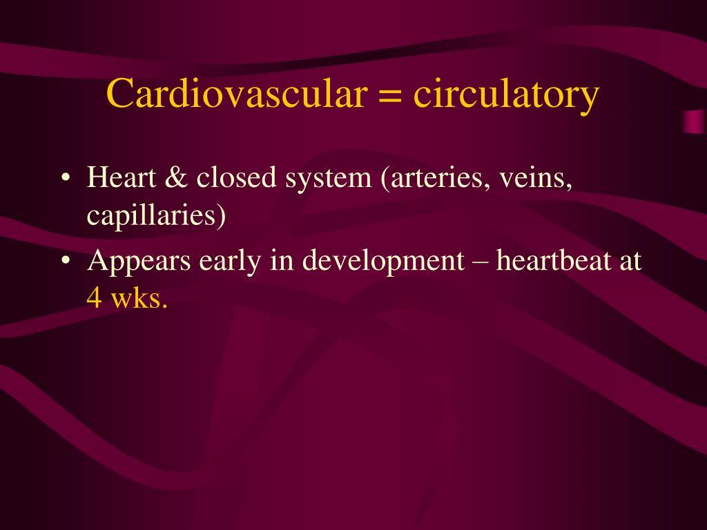 Cardiovascular = circulatory