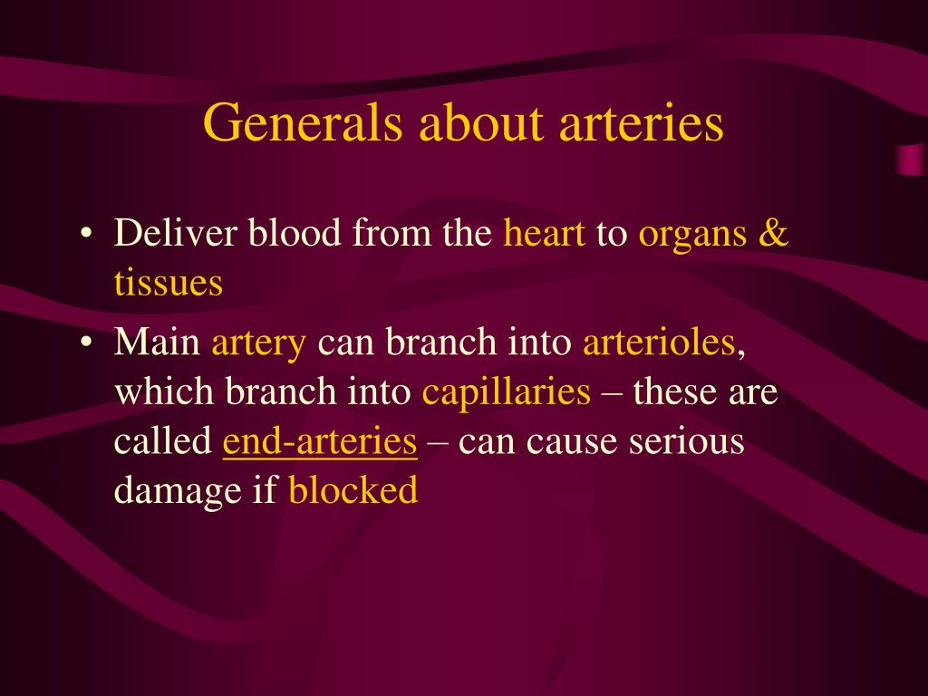 Generals about arteries