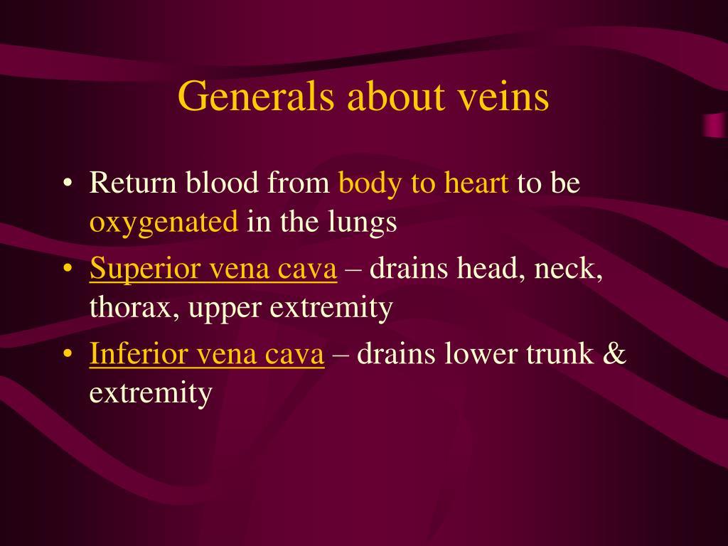Generals about veins