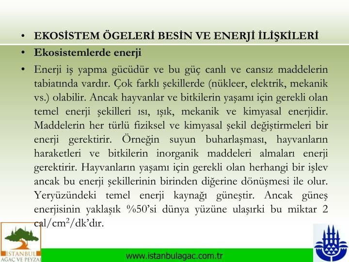 EKOSİSTEM ÖGELERİ BESİN VE ENERJİ İLİŞKİLERİ