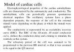 model of cardiac cells