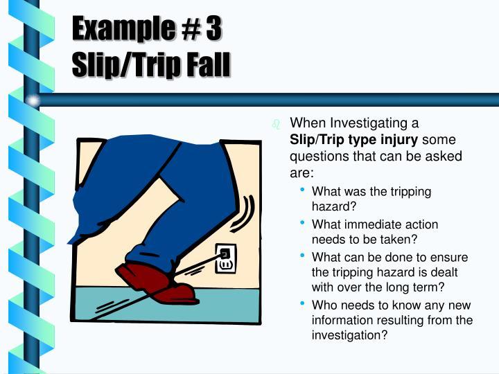 Example # 3