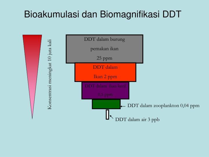 Bioakumulasi dan Biomagnifikasi DDT