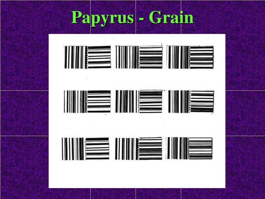 Papyrus - Grain