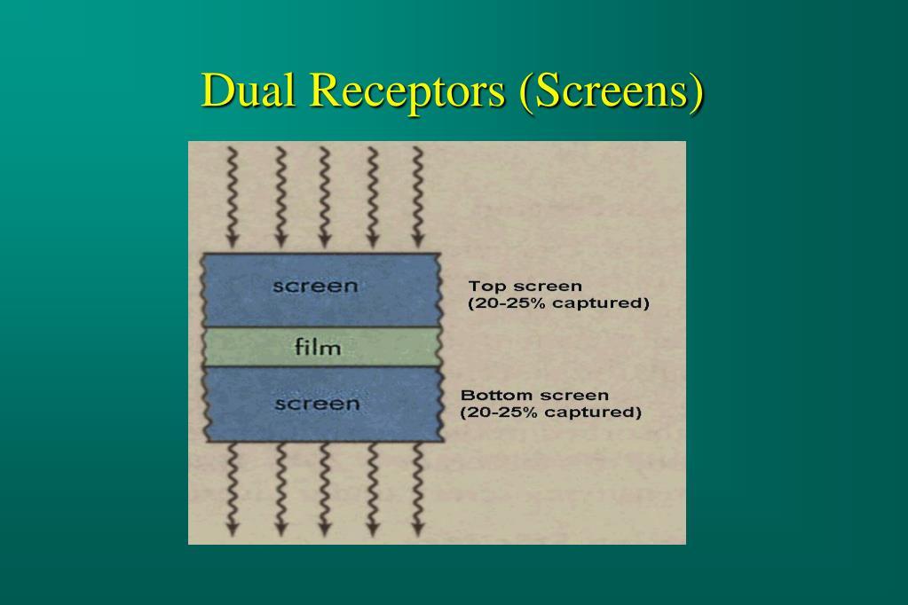 Dual Receptors (Screens)