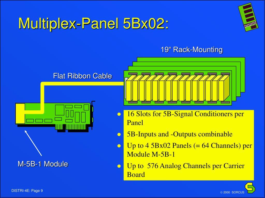 Multiplex-Panel 5Bx02: