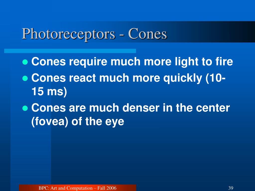 Photoreceptors - Cones