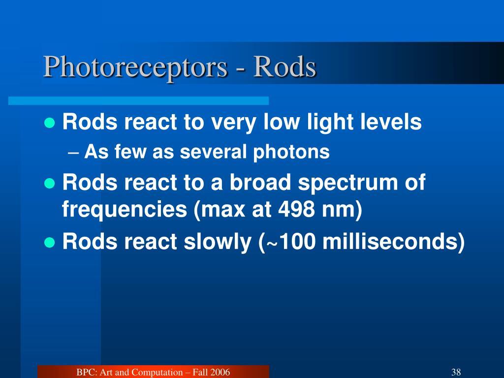 Photoreceptors - Rods