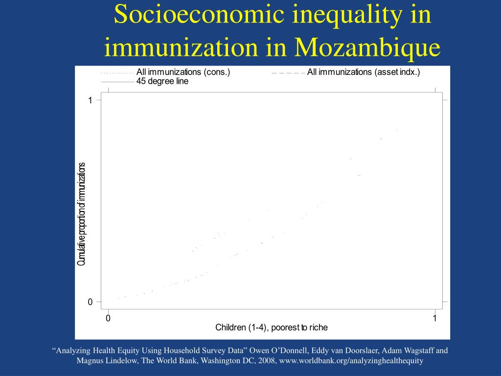 Socioeconomic inequality in immunization in Mozambique