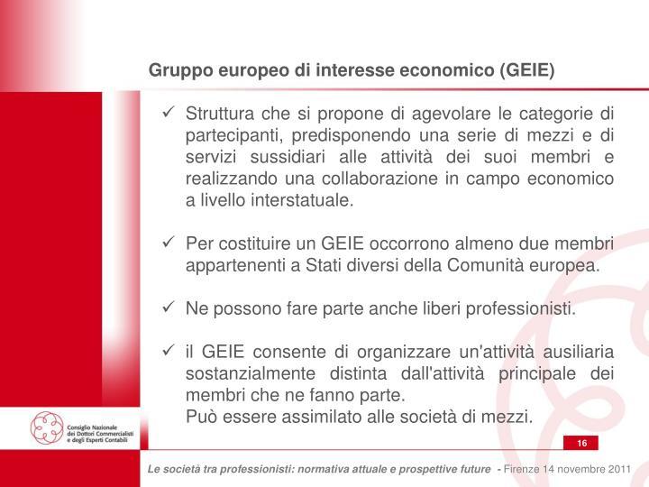 Gruppo europeo di interesse economico (GEIE)