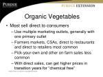 organic vegetables3