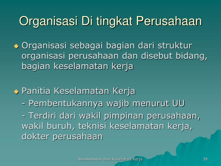 Organisasi Di tingkat Perusahaan
