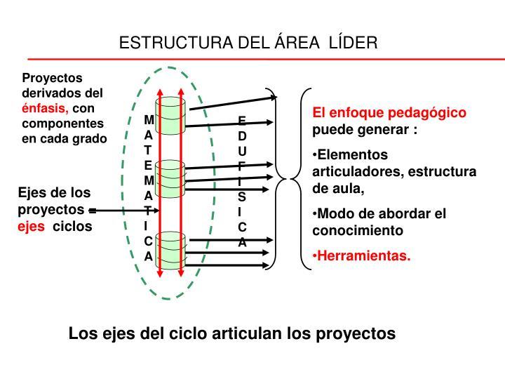 ESTRUCTURA DEL ÁREA  LÍDER