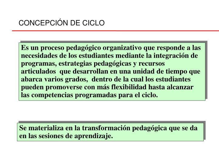 CONCEPCIÓN DE CICLO