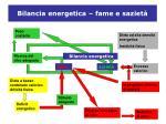bilancia energetica fame e saziet
