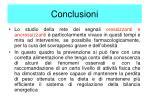 conclusioni2