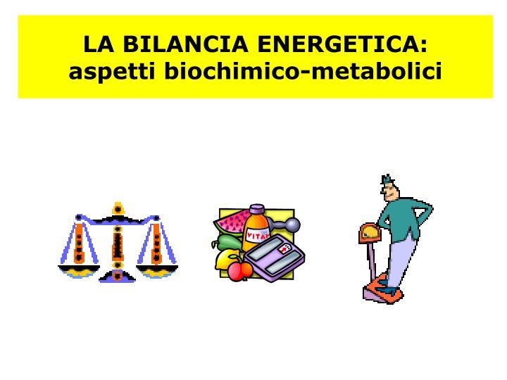 LA BILANCIA ENERGETICA: