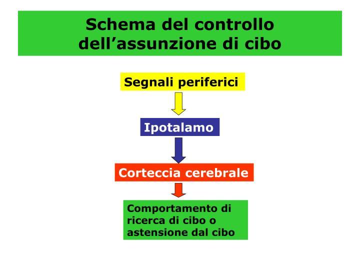 Schema del controllo dell'assunzione di cibo