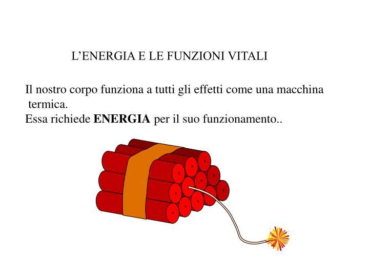 L'ENERGIA E LE FUNZIONI VITALI