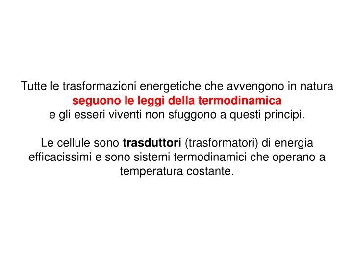 Tutte le trasformazioni energetiche che avvengono in natura
