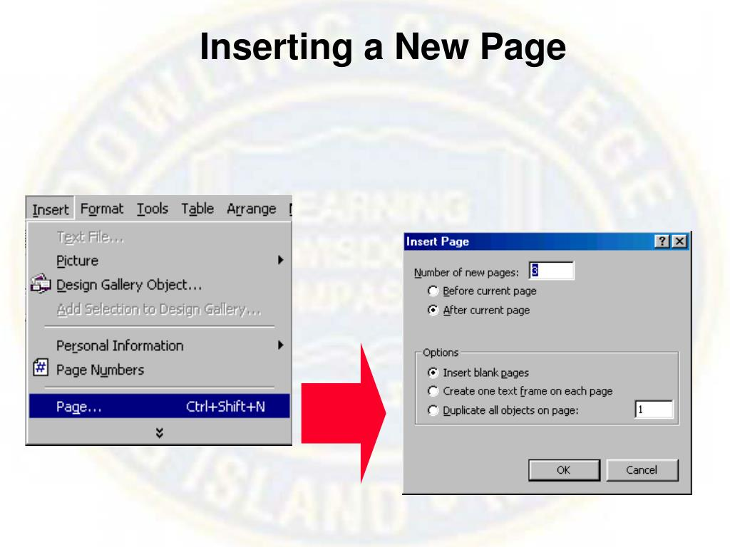 Inserting a New Page