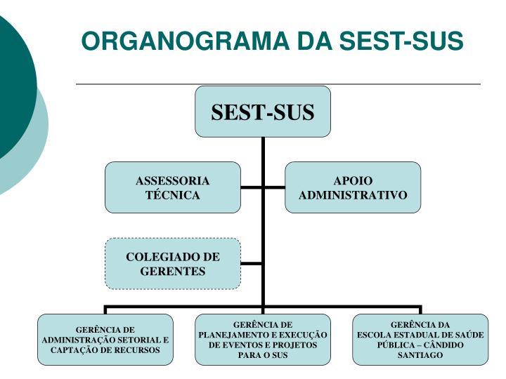 ORGANOGRAMA DA SEST-SUS