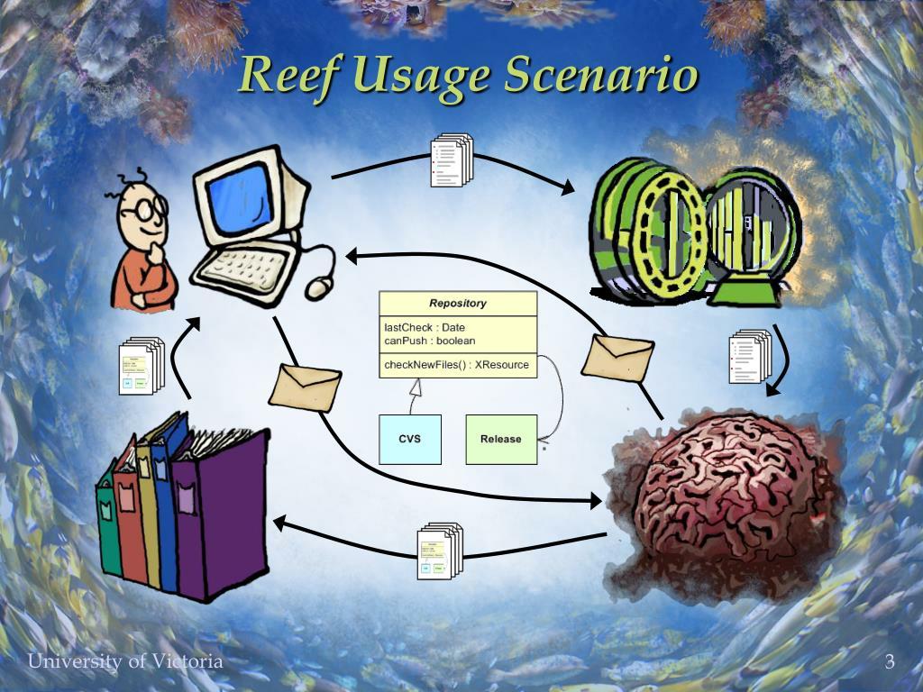 Reef Usage Scenario
