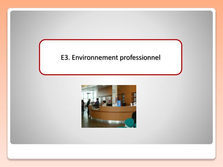E3. Environnement professionnel