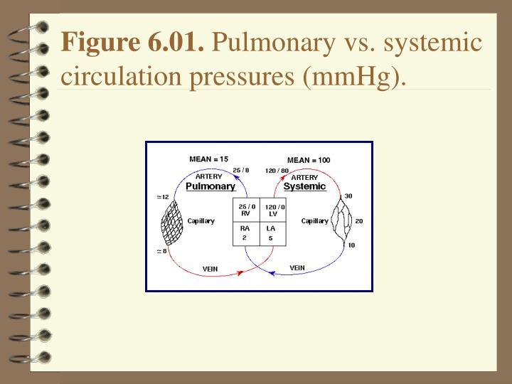 Figure 6.01.
