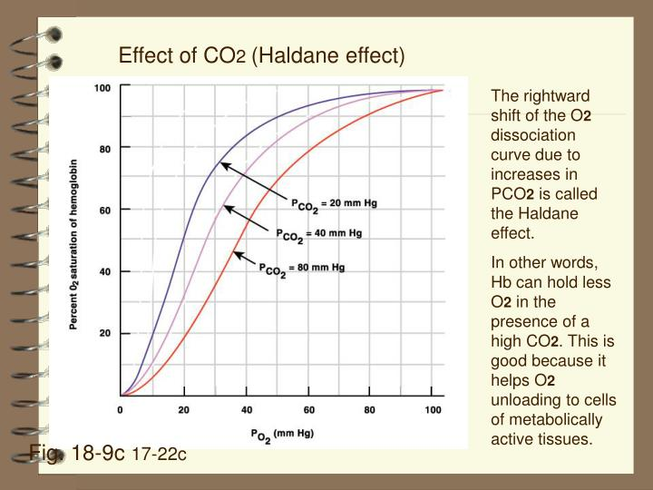 Effect of CO