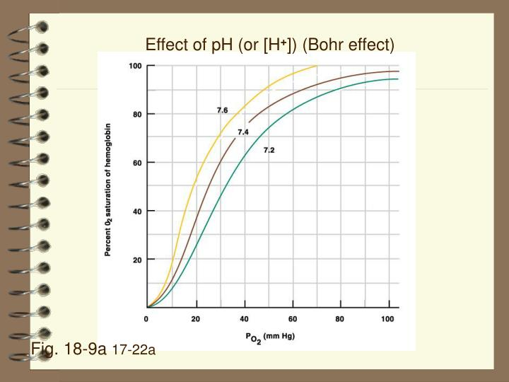 Effect of pH (or [H