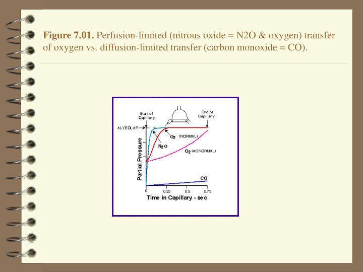 Figure 7.01.