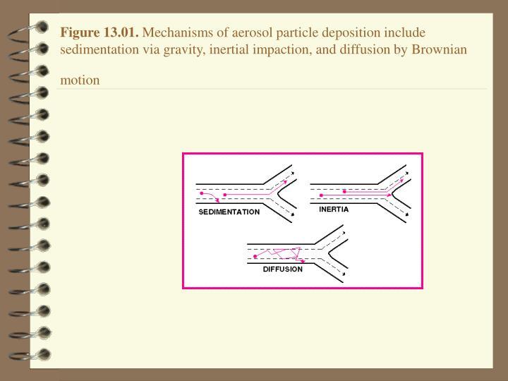 Figure 13.01.