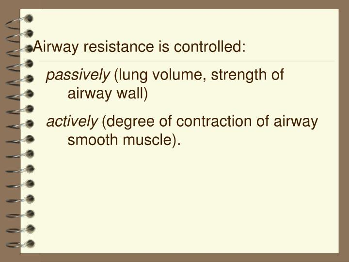 Airway resistance is controlled:
