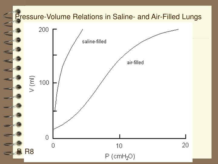 Pressure-Volume Relations in Saline- and Air-Filled Lungs
