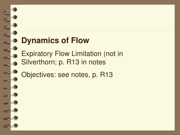 Dynamics of Flow