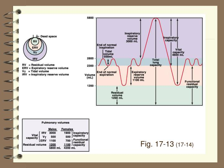Fig. 17-13