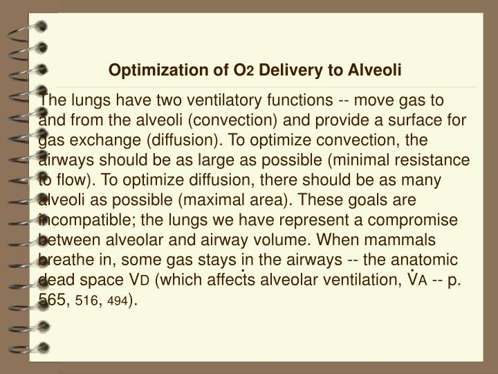 Optimization of O