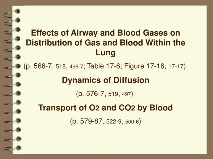 Effects of Airway and Blood Gases on Distribution of Gas and Blood Within the Lung