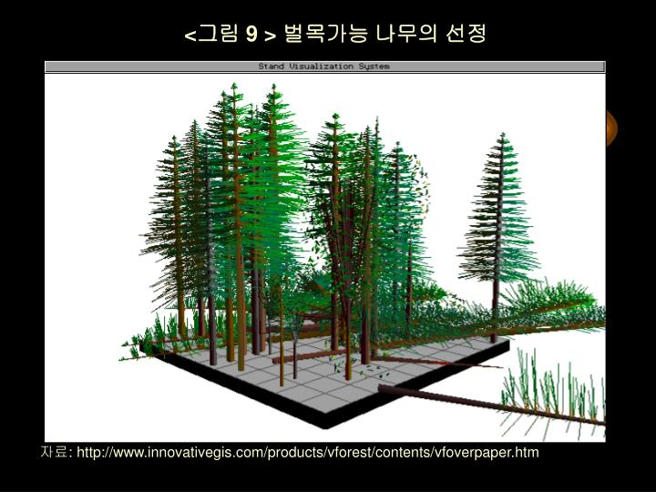 <그림 9 > 벌목가능 나무의 선정