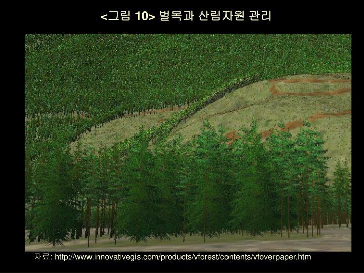 <그림 10> 벌목과 산림자원 관리