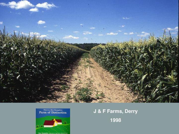 J & F Farms, Derry