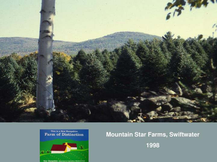 Mountain Star Farms, Swiftwater