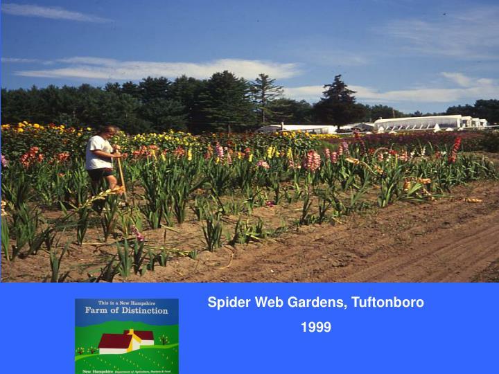 Spider Web Gardens, Tuftonboro