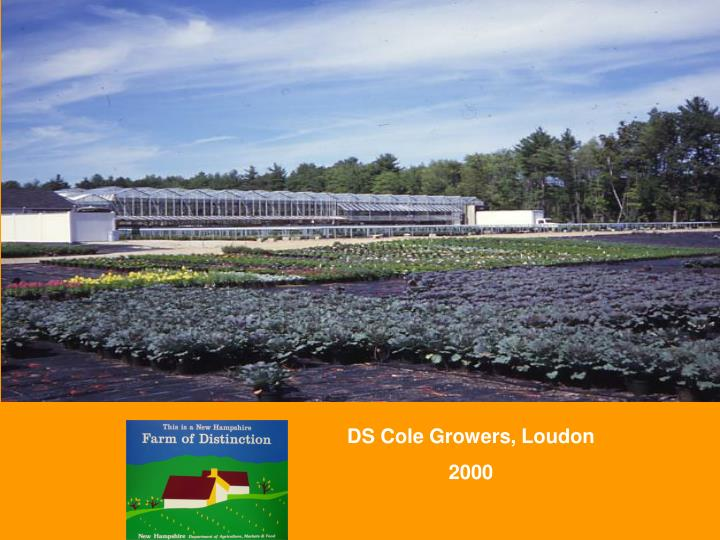 DS Cole Growers, Loudon