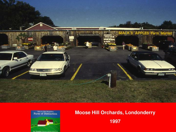 Moose Hill Orchards, Londonderry