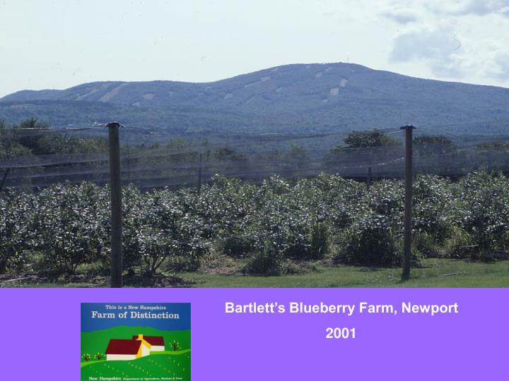 Bartlett's Blueberry Farm, Newport