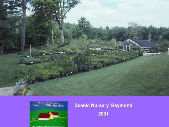 Scenic Nursery, Raymond