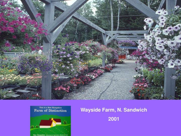 Wayside Farm, N. Sandwich